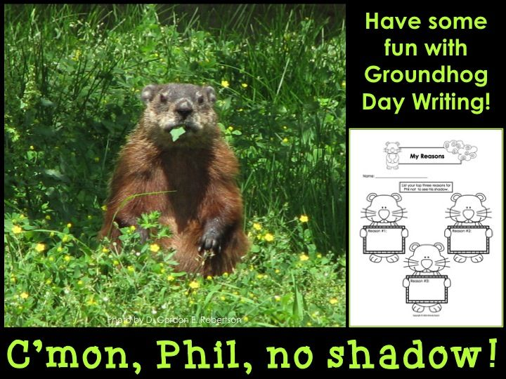 best persuasive writing images teaching writing groundhog day persuasive writing