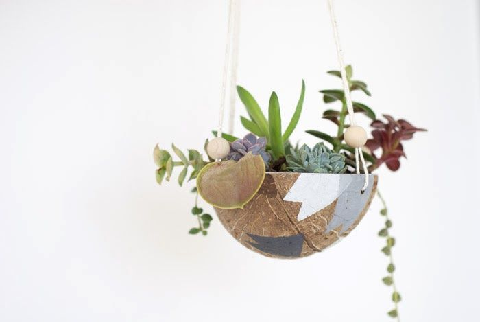 Poppytalk: Weekend Project DIY | Coconut Hanging Planter