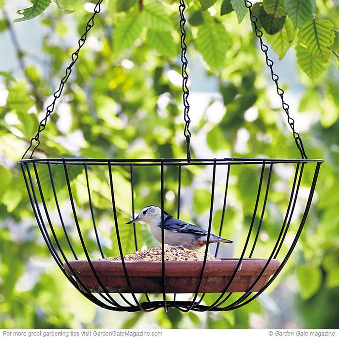 Use 2 baskets together to form a circle (hinge to add seed easily) to keep the big birds out
