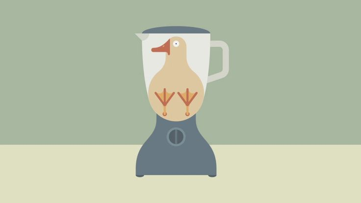 Pâté - Je suis Pâté  Animation produced in collaboration with Plastic Horse  Tiphaine-illustration  #PlasticHorse #animation #duck #kitchen