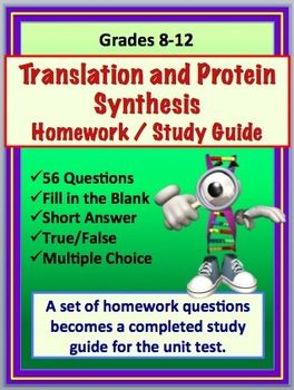 Homework help study guide answers
