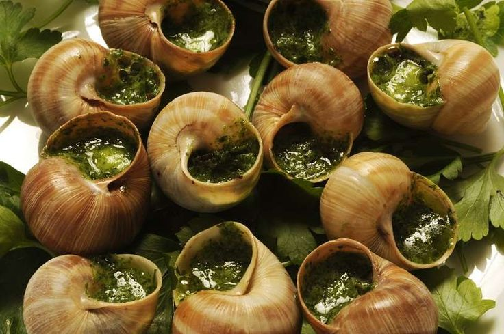 Escargot - funny joke about a man sent to buy snails for his wife, but who gets horribly drunk on the way home. Hilarious!