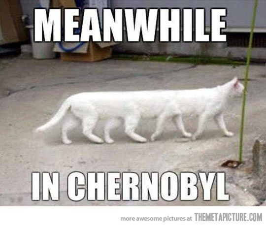 Chernobyl people will know…