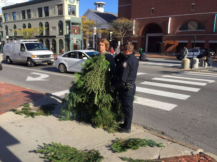 Полиция США арестовала мужчину в костюме дерева на проезжей части