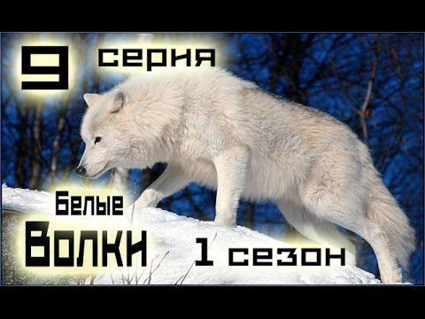 Сериал Белые волки 9 серия 1 сезон (1-14 серия) - Русский сериал HD