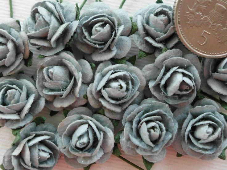 100 CUTE MULBERRY ROSES - 10MM - STYLISH SILVER GREY!