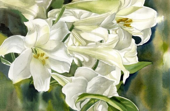 A painting a day #9 'Many shades of white'