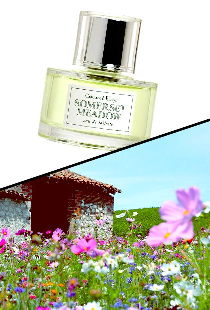 Crabtree and Evelyn Somerset Meadow:  Smells just like … A field of wildflowers in the English countryside just after a rain shower  $40 for 2oz