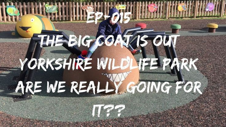 https://www.youtube.com/watch?v=yohUS1i6ZbM EP | 015 The Big Coat Is Out | Yorkshire Wildlife Park | Are We Really Going For It?? #Vlogger #YWP #YouTube