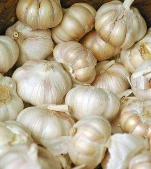 L'aglio è conosciuto per essere uno degli antibiotici naturali più potenti in natura. L'elenco delle malattie che può trattare è veramente lungo e comprende: candida, klebsiella, afte, infezioni viral