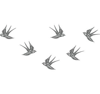 Retro Swallows Wall Decal - We Heart This