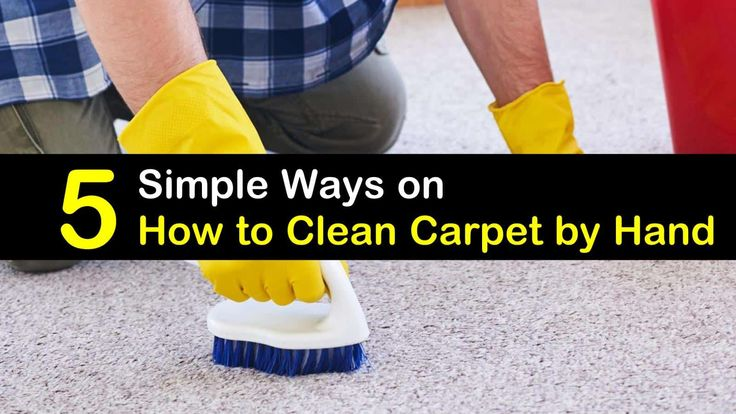 5 Simple Ways on How to Clean Carpet by Hand How to