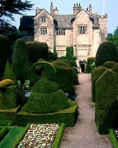 Wonderful topiary at Levens Hall, Cumbria, some of the oldest topiary in the UK having been planted at trained in the 1690s!
