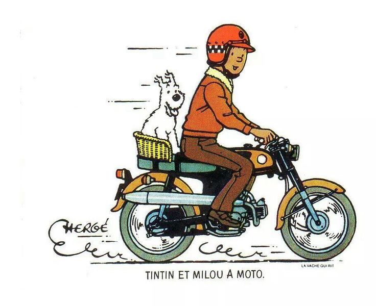 A moto