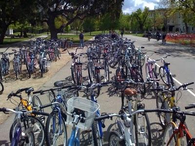 Bikes in Davis, CA