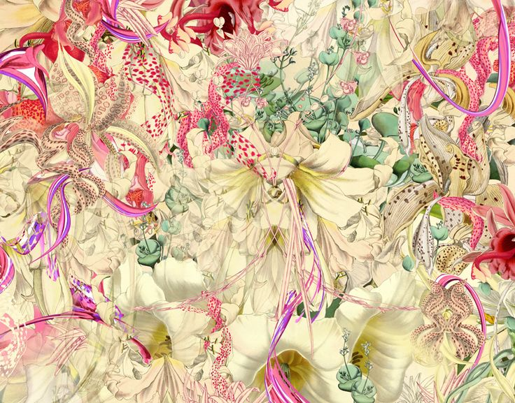 Edward, new botany series, 100 x 70 cm, mixed media, fine art print on hahnemuhle photo rag, 10 signed prints