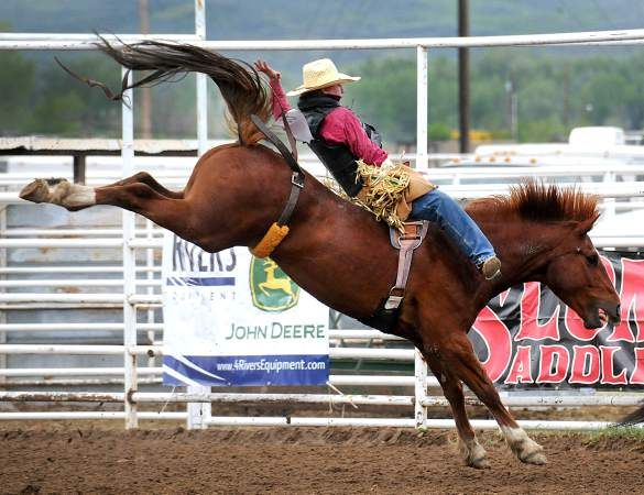 The Pueblo Chieftain | Hornets reach the big show