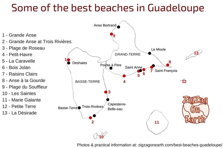 Explore The Beauty Of Caribbean: 1000+ Ideas About Guadalupe Island On Pinterest