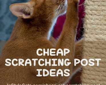 Cheap Cat Scratching Post