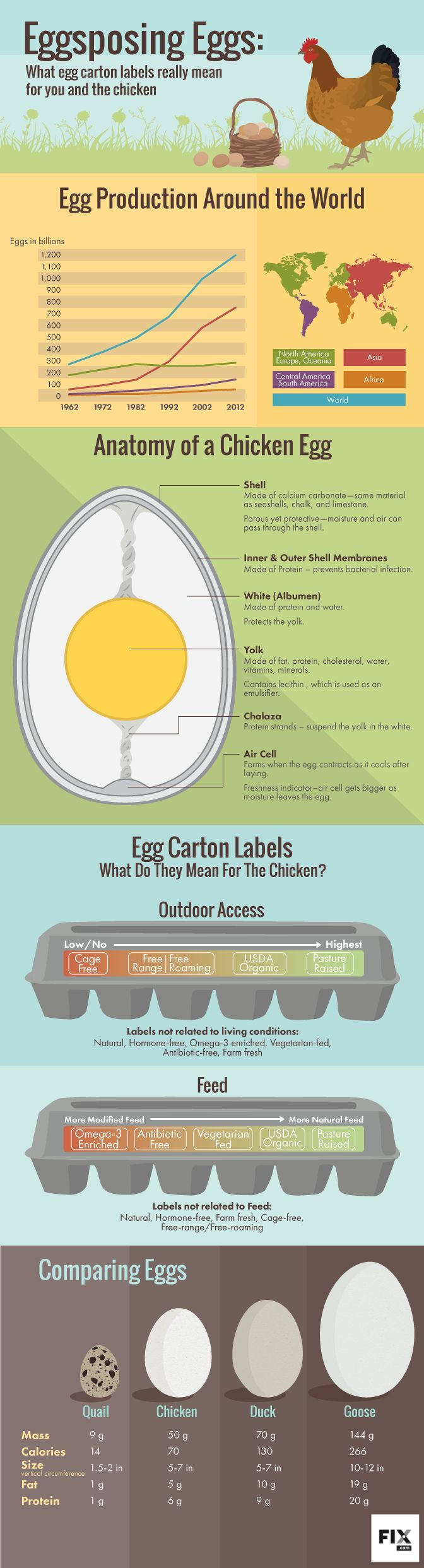 The article contains additional info - It covers the certifying organizations, not just the labels. Learn which egg carton labels and certification stamps are most meaningful for the welfare of laying hens, so you can make informed purchases.