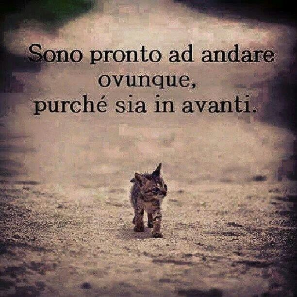 17 Best Images About H O M E On Pinterest: 17 Best Images About Citazioni E Frasi On Pinterest