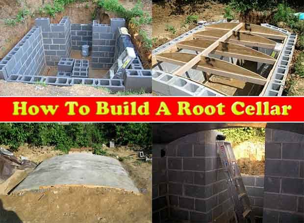 of great tips and advice how to build a root cel pinteres
