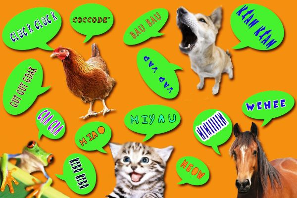 Articolo interessante sui versi degli animali!  http://www.focusjunior.it/imparo/cos-e-come-si-fa/i-suoni-degli-animali-in-tutte-le-lingue
