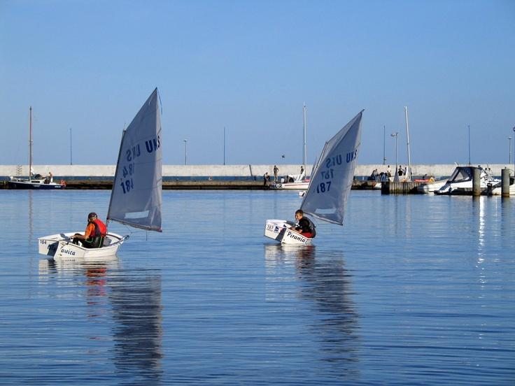 Młodzi adepci żeglarstwa na optymistach. Fot. radio RMF FM