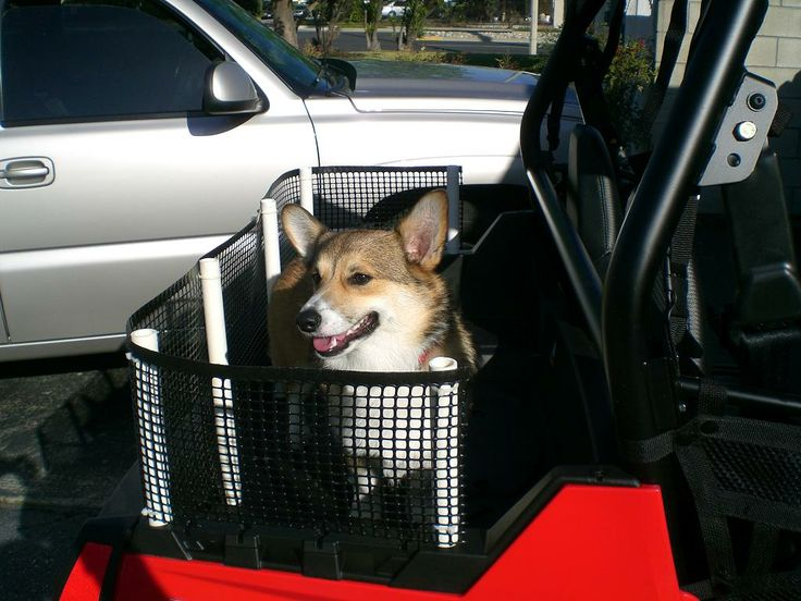 Pet Carrier For Bed    - Polaris Rzr Forum