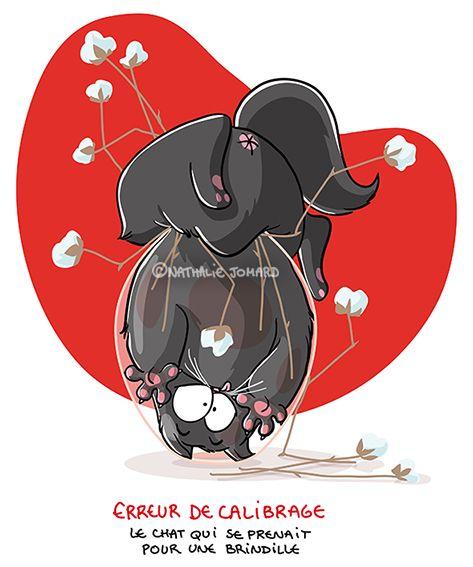 Petit précis de Grumeautique - Blog illustré: Quand Chat-Bouboule se prend pour Chat-Brindille