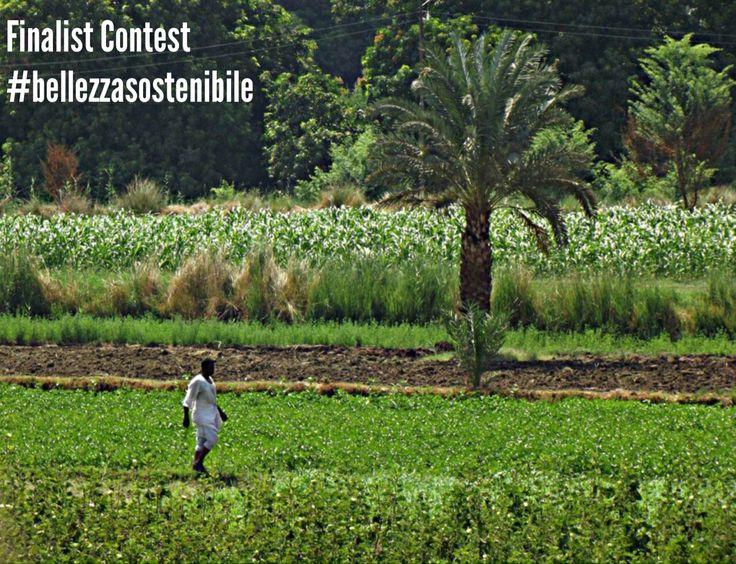 Contest #BellezzaSostenibile 2014! 3° finalist! The author is Jessica Fabretti!