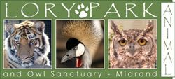 Lory Park Animal and Owl Sanctuary can organise day trips on weekdays for schools up to 120 children. We provide guided tours through the zoo, which usually start at 9am for all school levels (grades 1-12 & preschoolers).