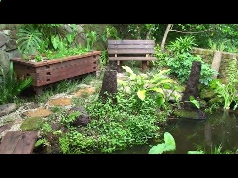 How to build an aquaponic pond system at home - YouTube