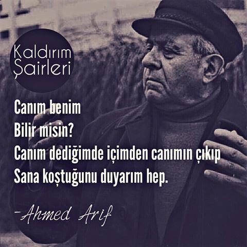 Canım benim  Bilir misin?  Canım dediğimde, içimden canımın çıkıp  Sana koştuğunu duyarım hep.   - Ahmed Arif  #sözler #anlamlısözler #güzelsözler #manalısözler #özlüsözler #alıntı #alıntılar #alıntıdır #alıntısözler