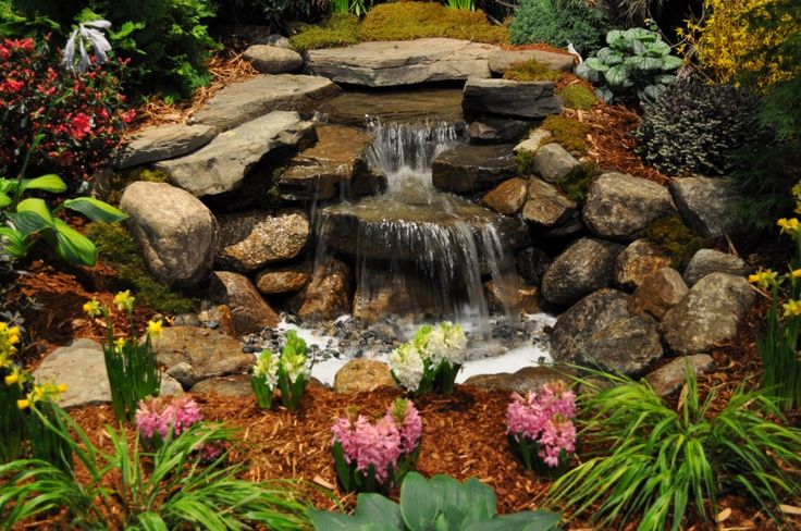 25 best ideas about backyard waterfalls on pinterest for Small pond care