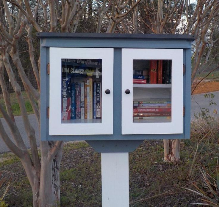 Blessing Box/Neighborhood Book Libraryone color with