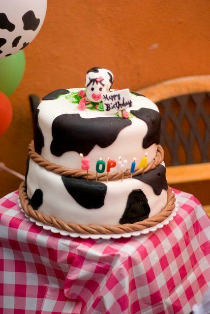 Cow cake at a Cowgirl Party cowgirl cake Recipes
