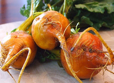 salt roasted golden beets with anise seeds roasted pickled beets oil ...