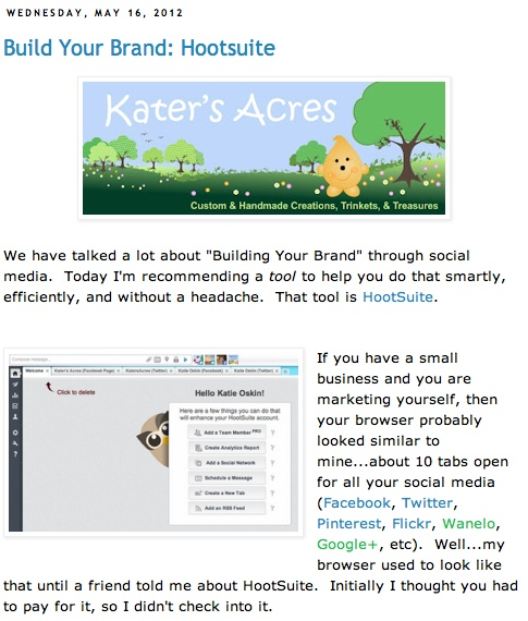 """""""Build Your Brand"""" series and using HootSuite."""