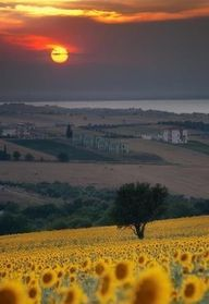 I want to go there: Sunset in Tuscany
