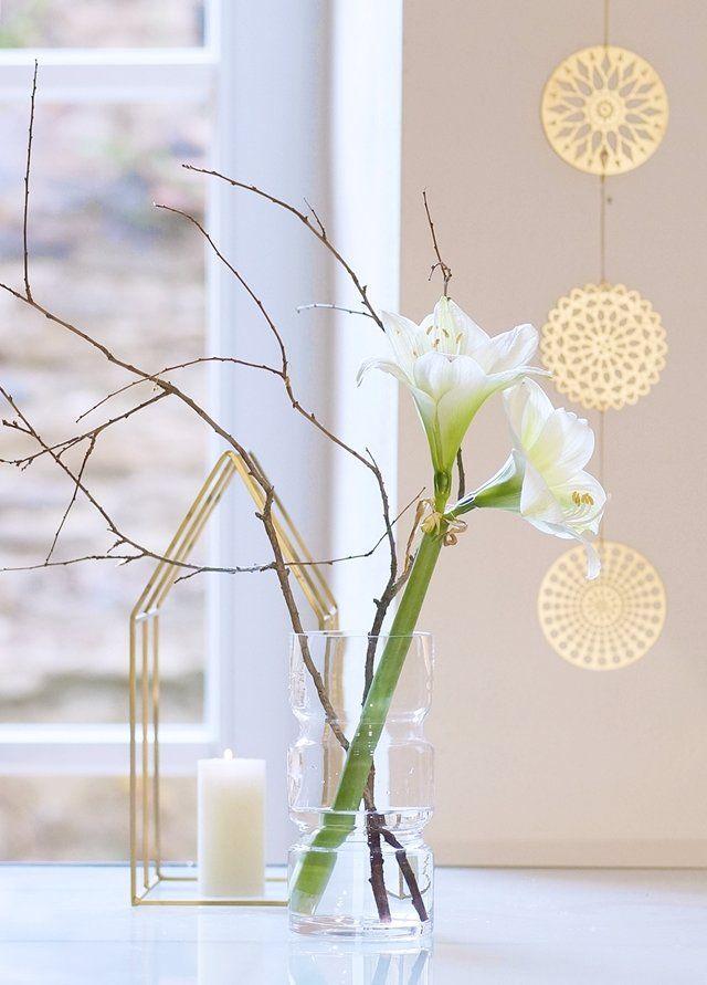 Ganz schlicht: eine weiße Amaryllis . Ich wünsche euch ein schönes stressfreies Wochenende :relaxed: