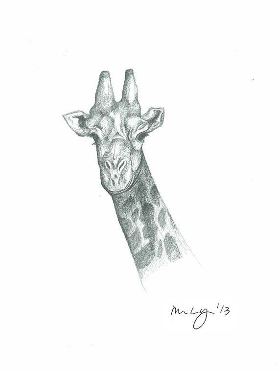 Giraffe Illustration all proceeds towards by MegansCozyCreatives, $4.00