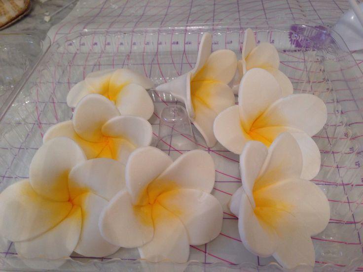 How to Make Tropical Flower Fondant