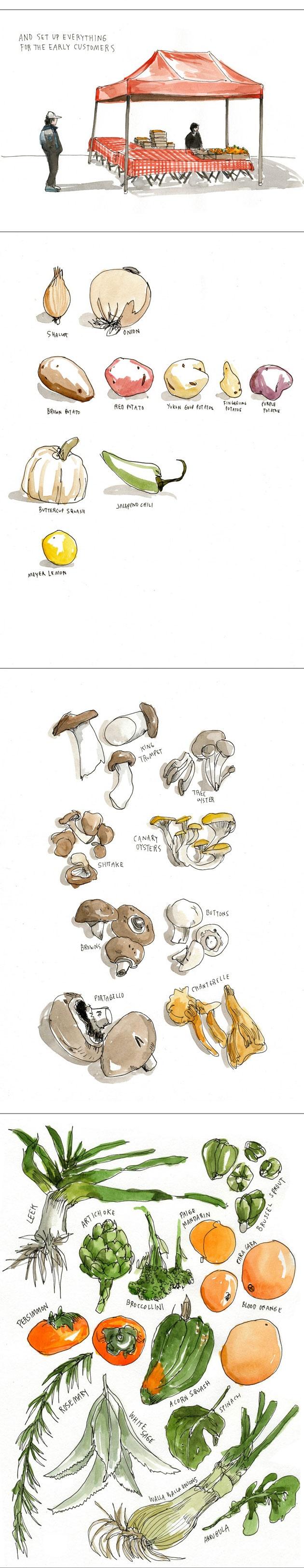 Illustration style to practice