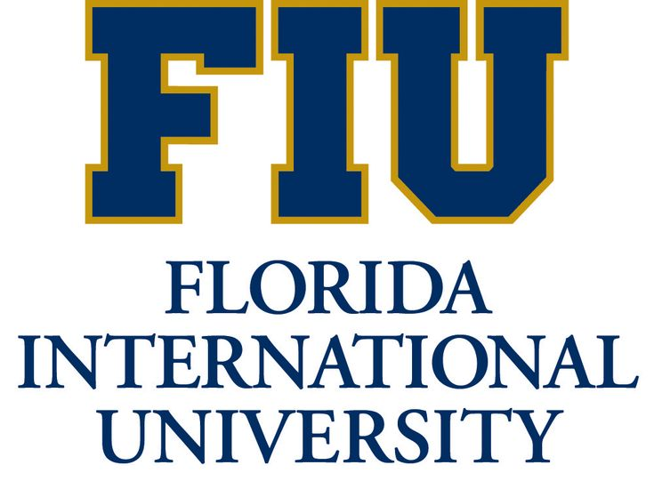 dissertation year or so fellowship fiu