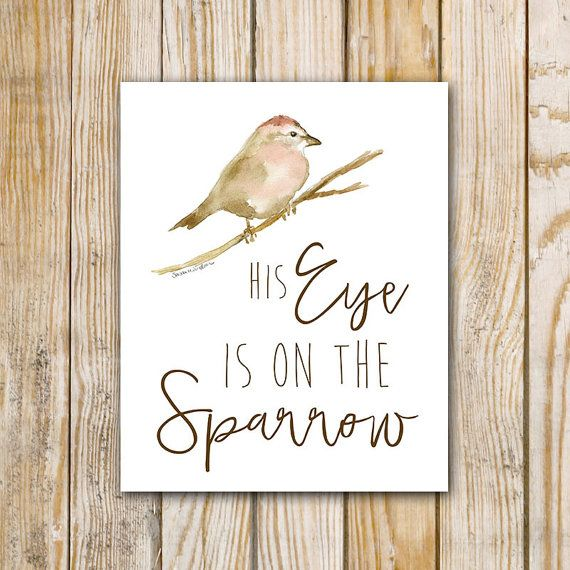 His Eye In On The Sparrow