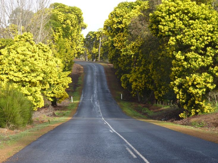 Nannup, South West Australia, from How to sleep well, Jo Castro on Lifestyle Fifty