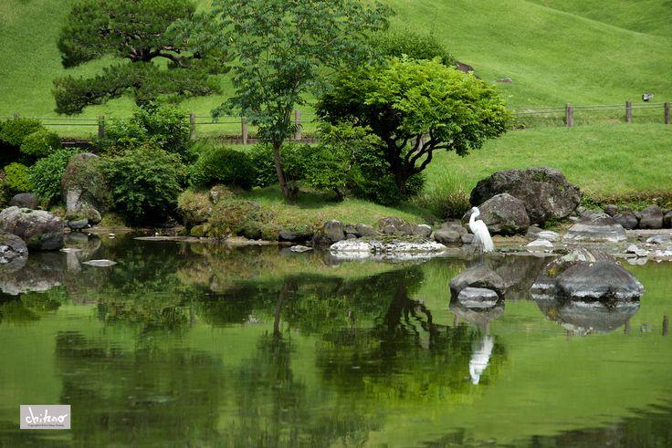 Suizenji park after Kumamoto earthquake on Behance