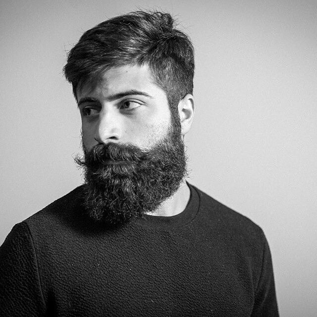 haircuts for cats 5934 best beard and other vices images on 2140