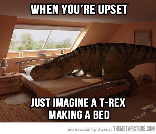 61 Best Images About Trex Jokes On Pinterest T